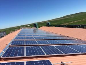 Panel solar para bombeo